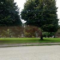 Giardini Via Verdi 3-2