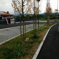 Via Pontedera 2-2